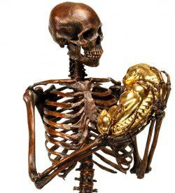 bronze skeleton with embryo