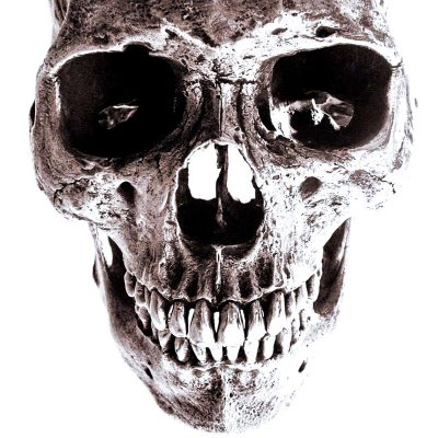 life size bronze skull silver plated museum grade