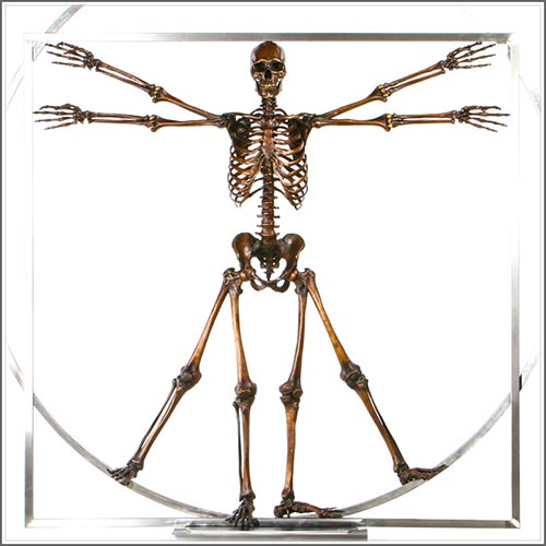 fine art bronze skulls, hands and skeletons