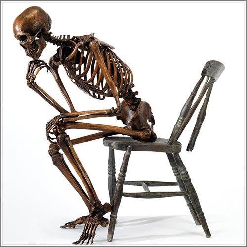Bronze skeleton fine art sculpture  anatomical museum grade