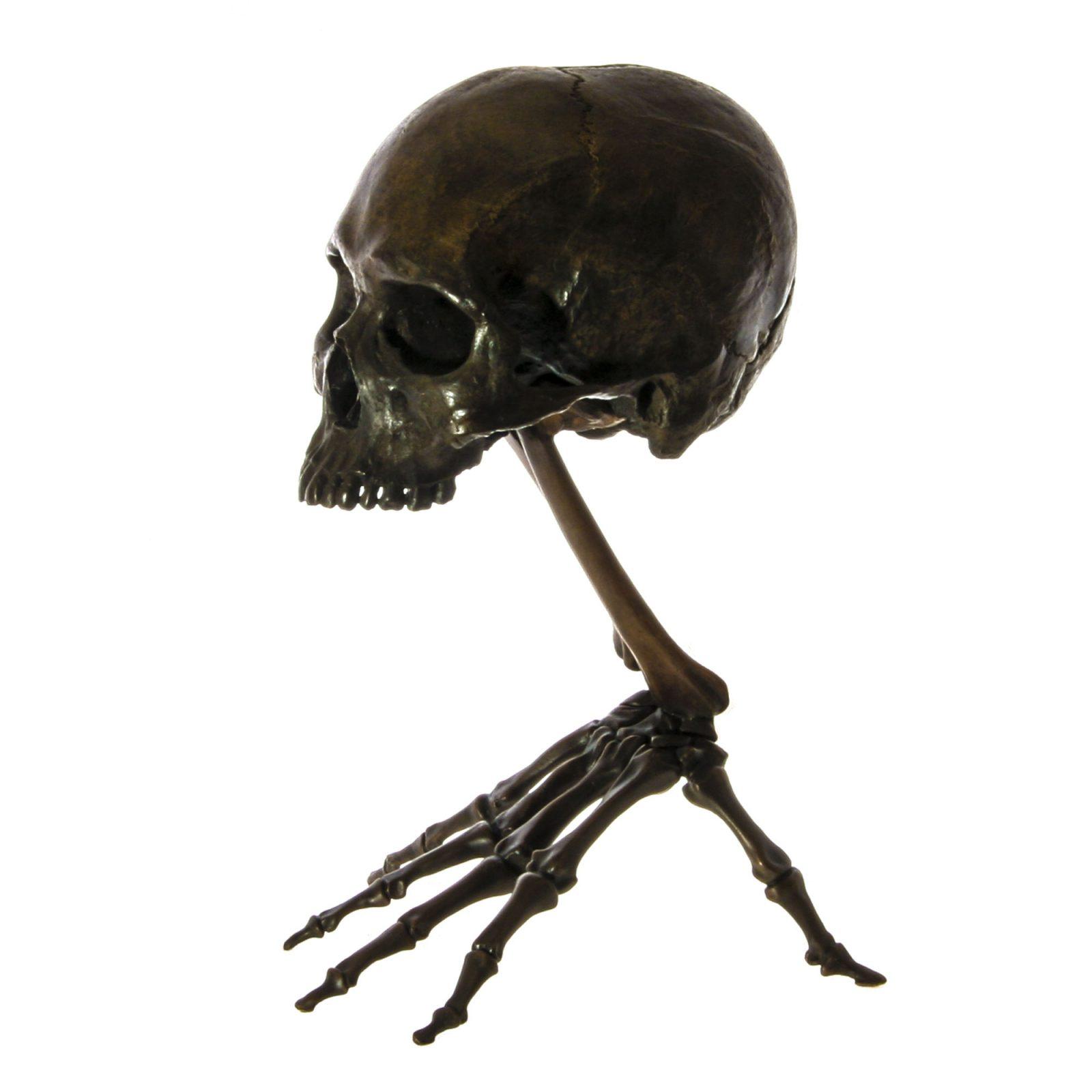skeleton hand with skull fine art bronze